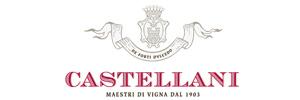 CASTELLANI S.p.A.